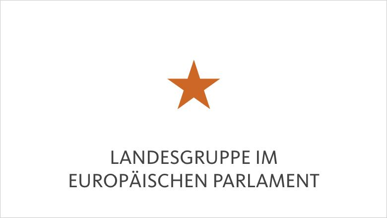 Landesgruppe im Europäischen Parlament